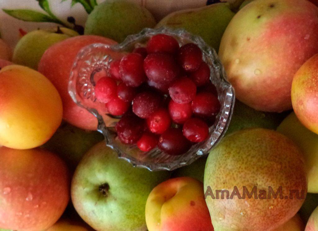 Брусника - рецепты на зиму с яблоками