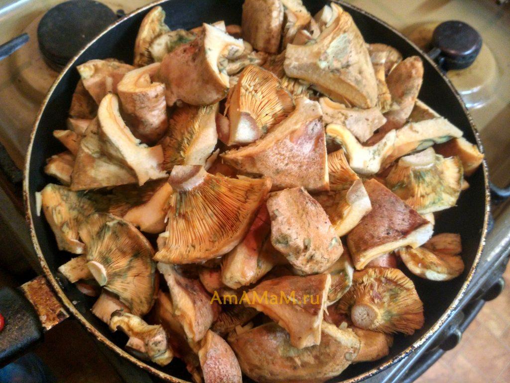 Жареные рыжики - простой и вкусный рецепт