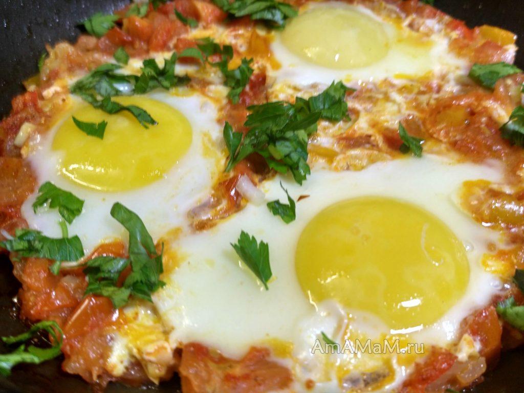 Рецепт шакшуки с помидорами, луком и болгарским перцем
