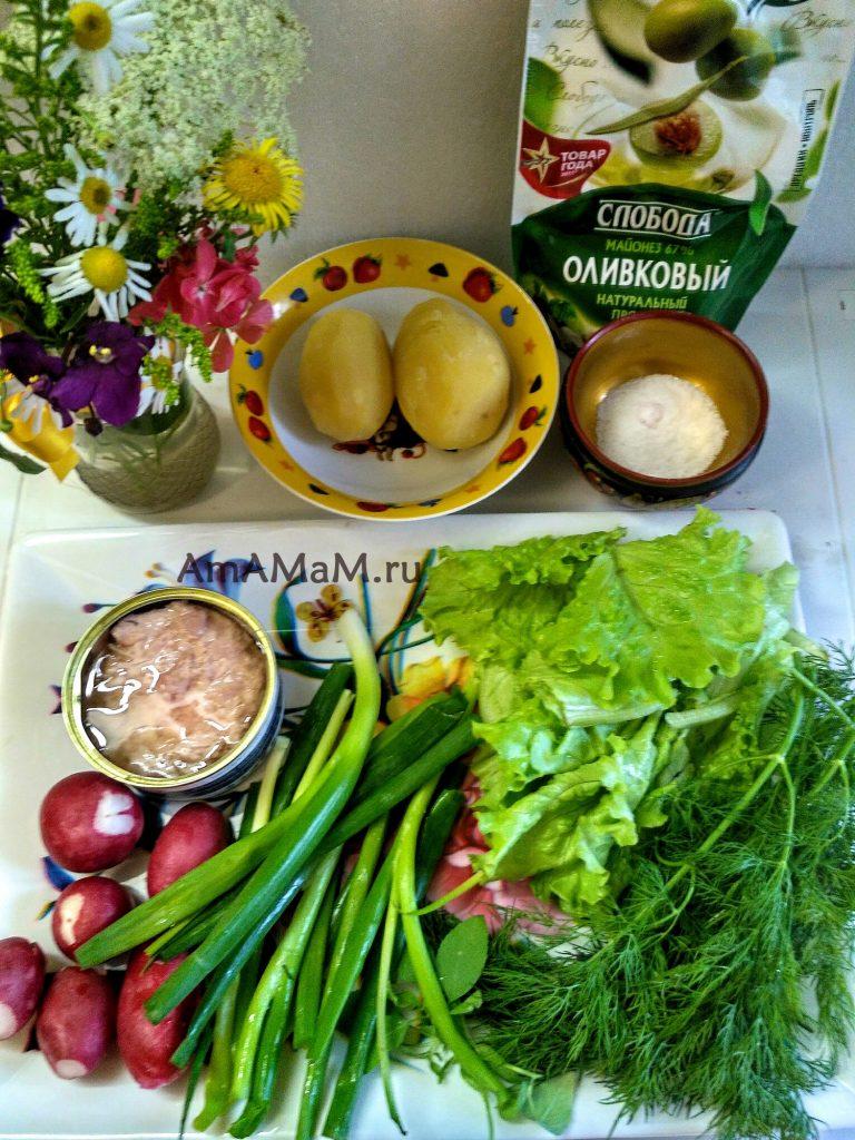 Ингредиенты салата с тунцом и редисом