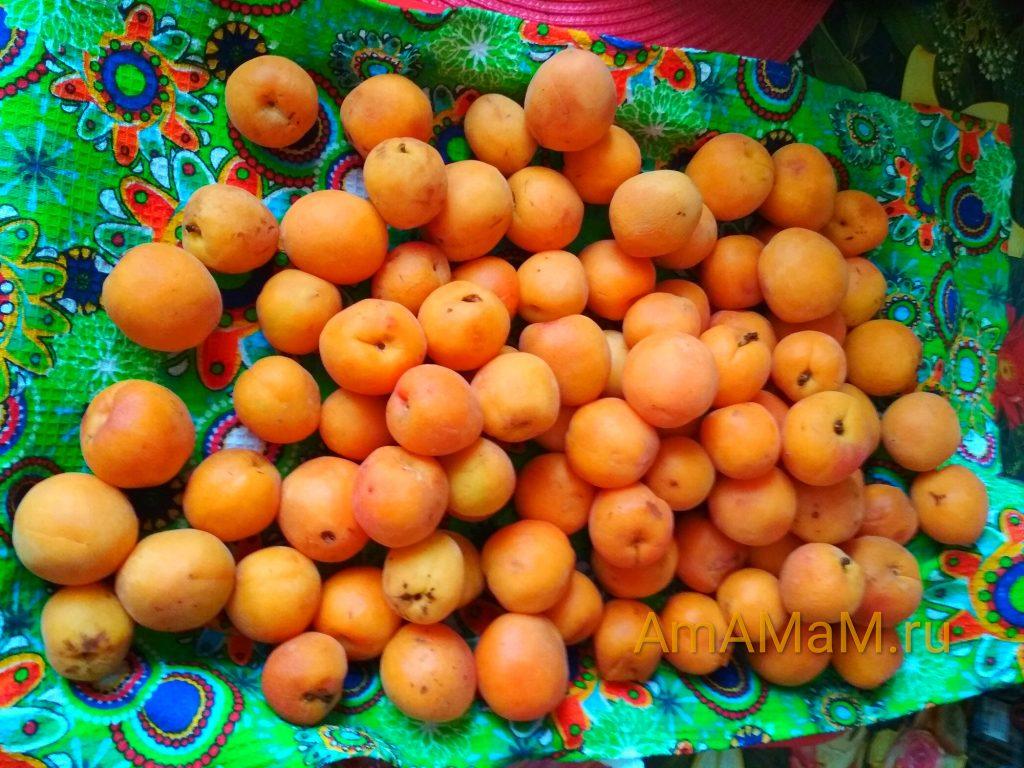 Мелкие абрикосы на варенье