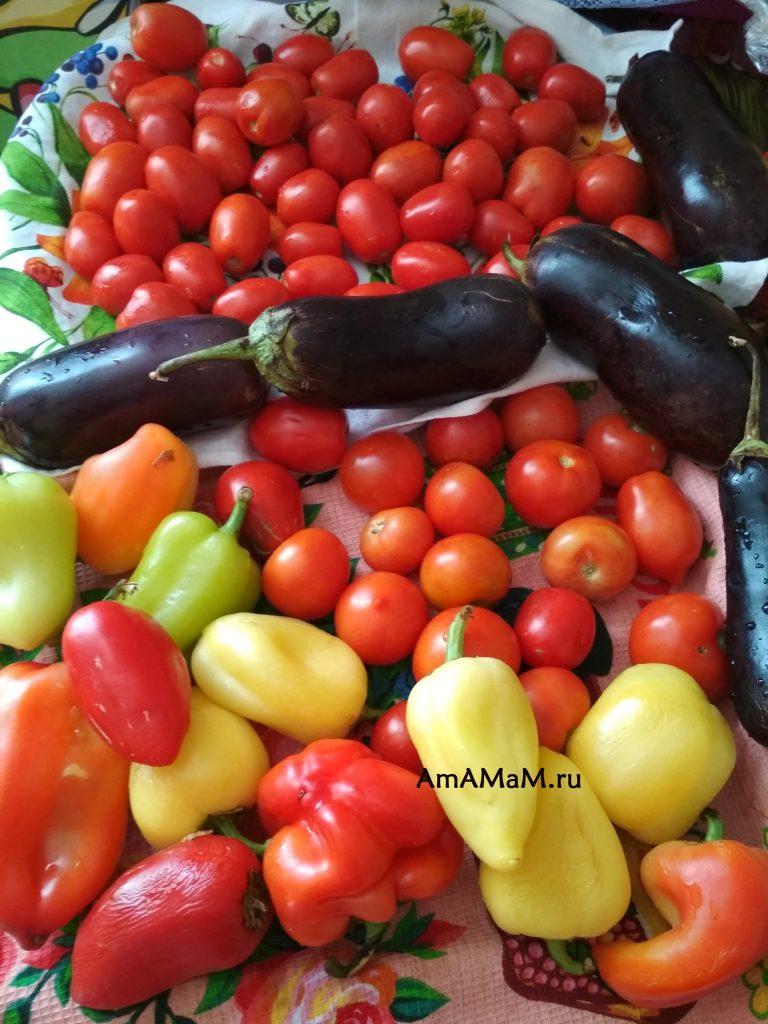 Овощи - состав баклажанной икры