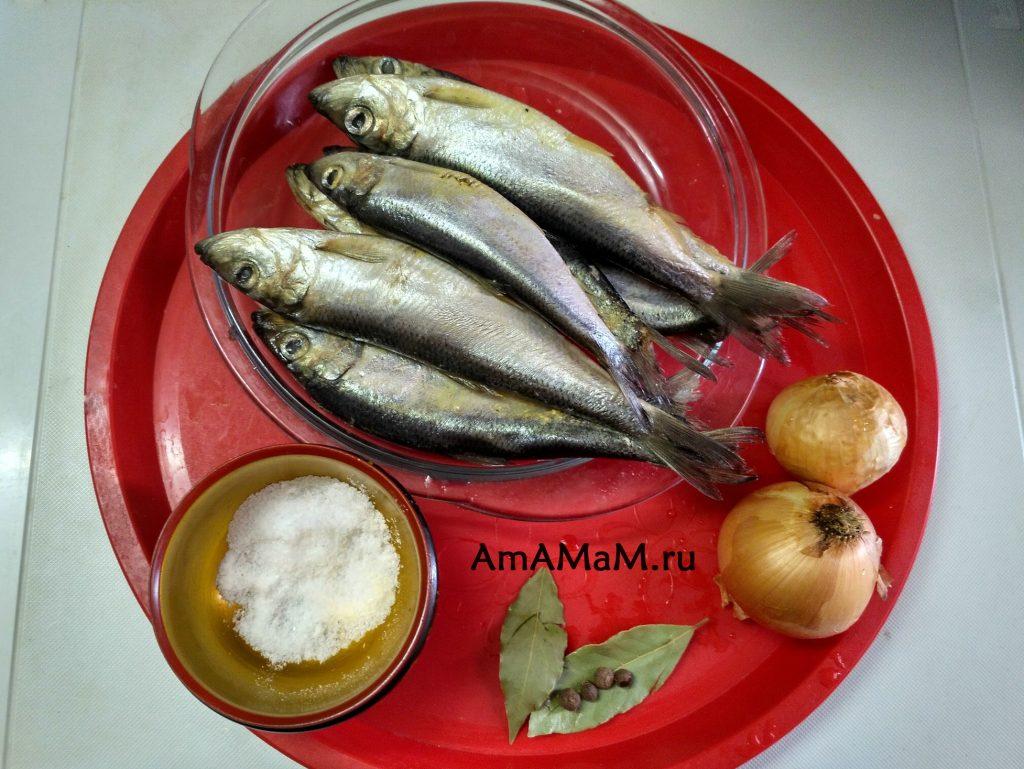 Ингредиенты рецепта тушеной салаки с луком