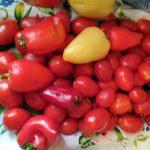 Овощи для заготовок на зиму