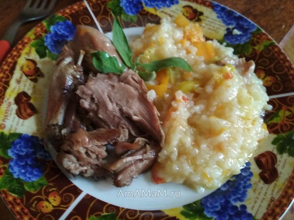 Голени индейки с рисом и овозщами