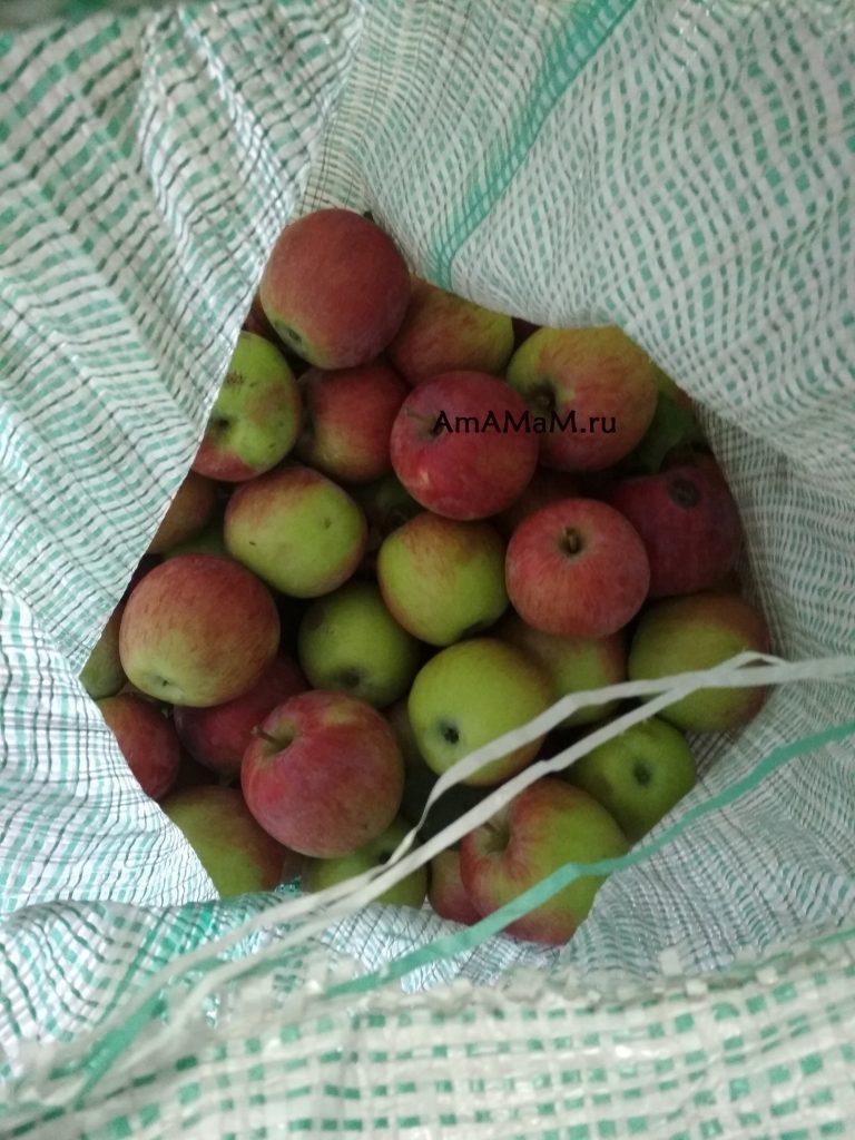 Мешок с яблоками