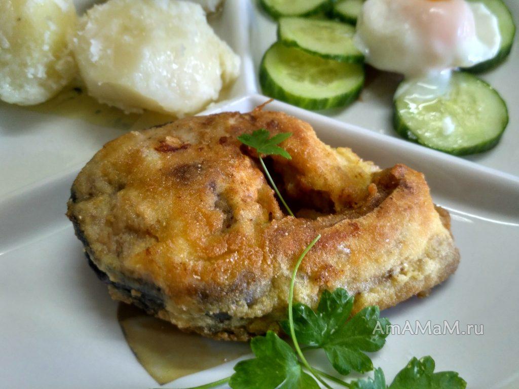 Тарелка с обедом из лакедры и картофеля