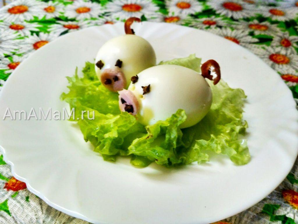Поросята - хрбшки из яиц