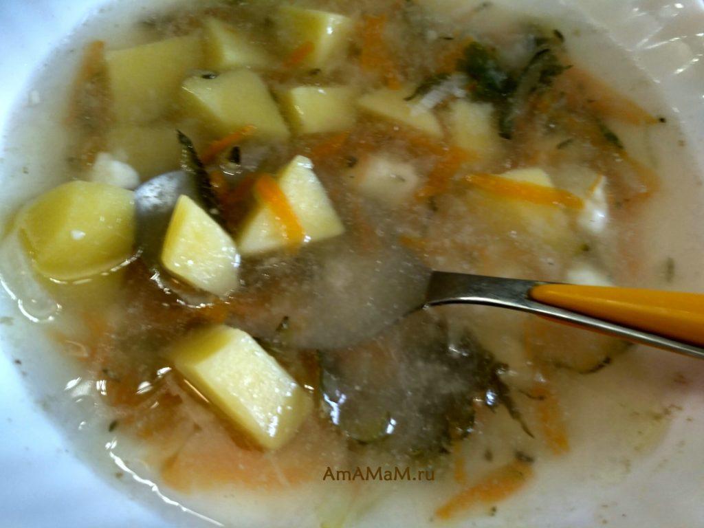 Суп с солеными огурцами (рассольник), польский рецепт