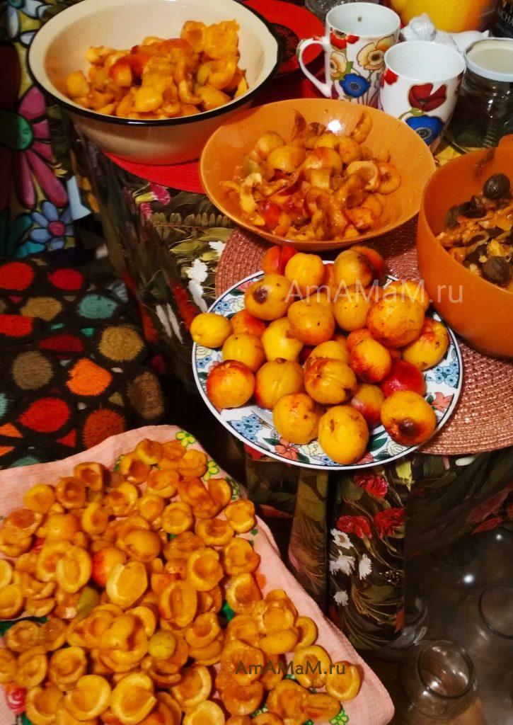 Как вялят абрикосы - фото