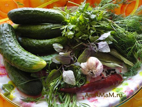 Что нужно для засолки огурцов - рецепт