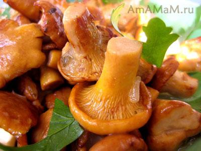 Жареные грибы лисички