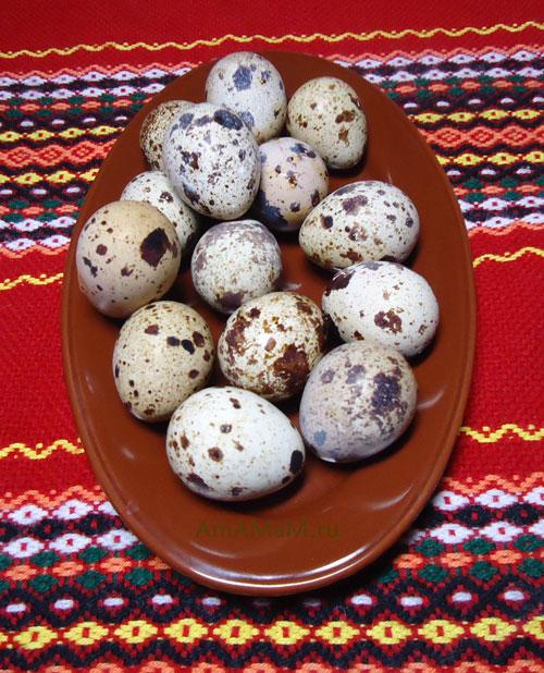 Можно ли делать Шотландский или Бычий глаз с перепелиными яйцами - рецепт и фото
