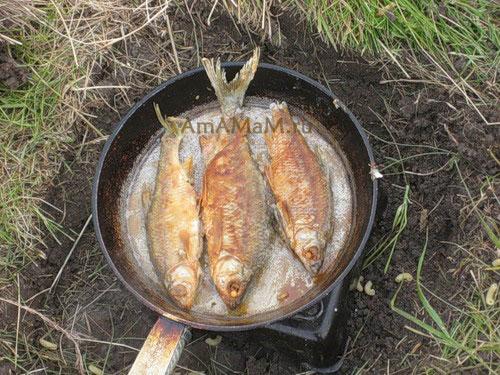 Жареная рыба на рыбалке