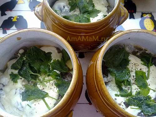 Жаркое из грибов с картофелем под сметаной - рецепт в горшочках