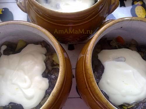 Жаркое из грибов со сметаной в горшочках