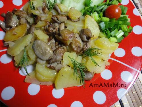 Вешенки жареные с картошкой