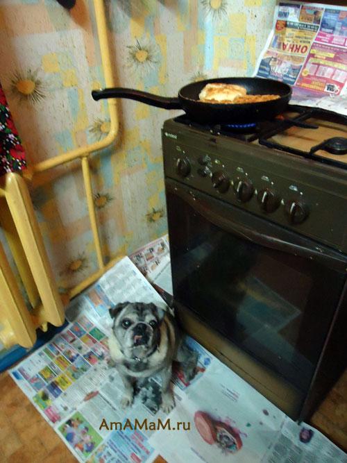 Как жарить беляши в сковороде - рецепт домашних беляшей