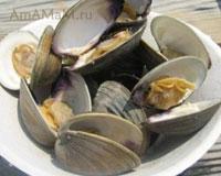 Моллюски устриц на тарелке