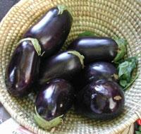 Вкусные рецепты: как консервировать баклажаны - простой рецепт вкусных синеньких!